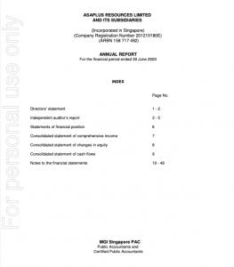 Asaplus Annual Report 2020
